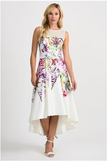 Mesh Insert Floral Dipped Hem Dress - Vanilla - 201219